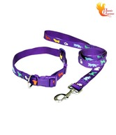 Smarty Cool Purple Collar & Lead