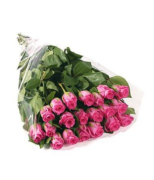 20 Pink Roses Hand Bunch