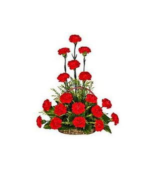 Cherish with Carnations