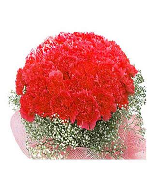 Red Fantasy Carnations Bouquet