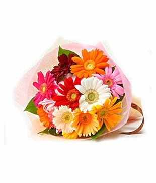 12 Multicolour Gerberas Bouquet