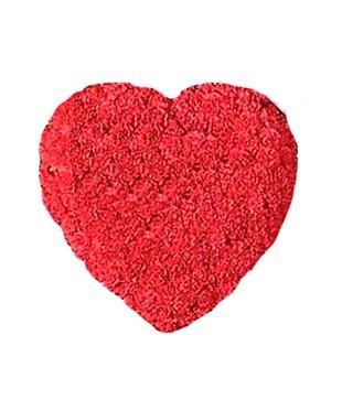 Red Carnation Heart