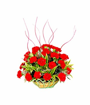 Designer Carnation Basket