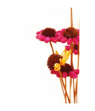 Artjini Pink Flowers On White Painting