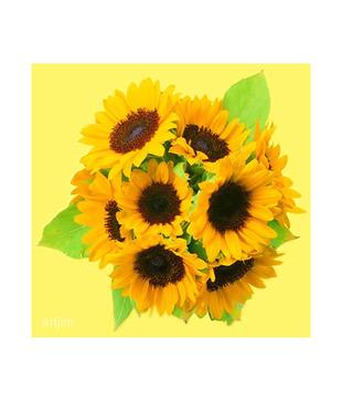 Artjini Sunflowers Painting