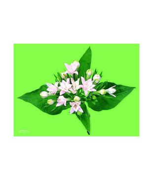 Artjini Fresh Bunch Of Flowers Painting